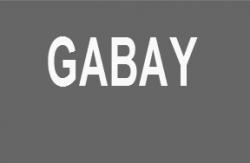 GABAY2-250x163
